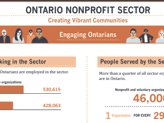 Emerging strategies to create a thriving non-profit sector