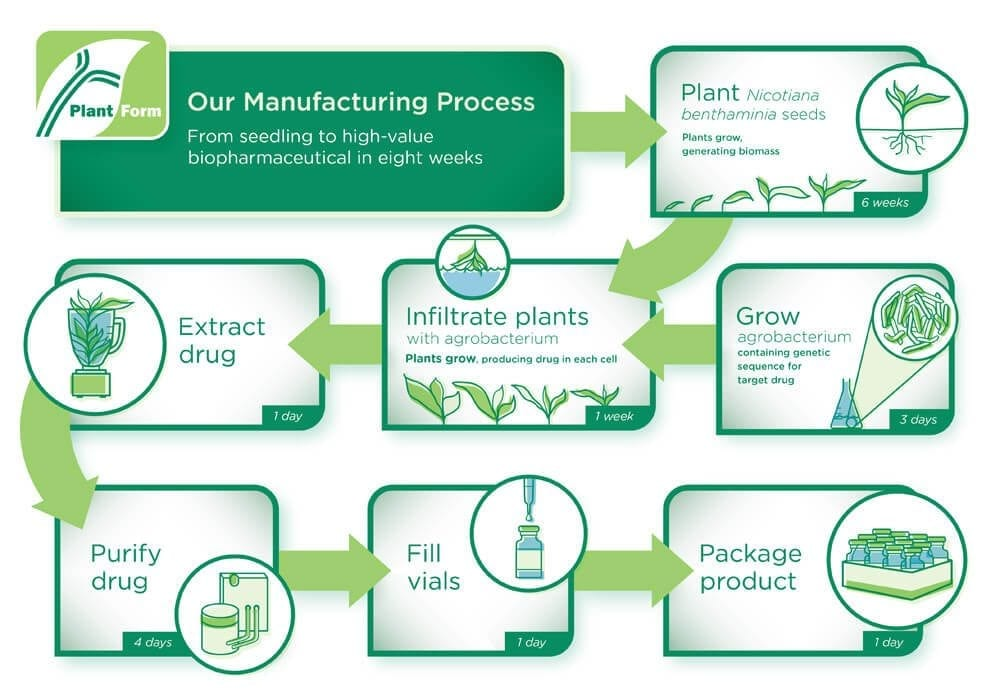 PlantForm's manufacturing process