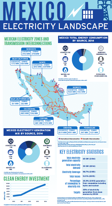 Mexican Electricity Landscape: This infographic provides a visual overview of the Mexican electricity sector
