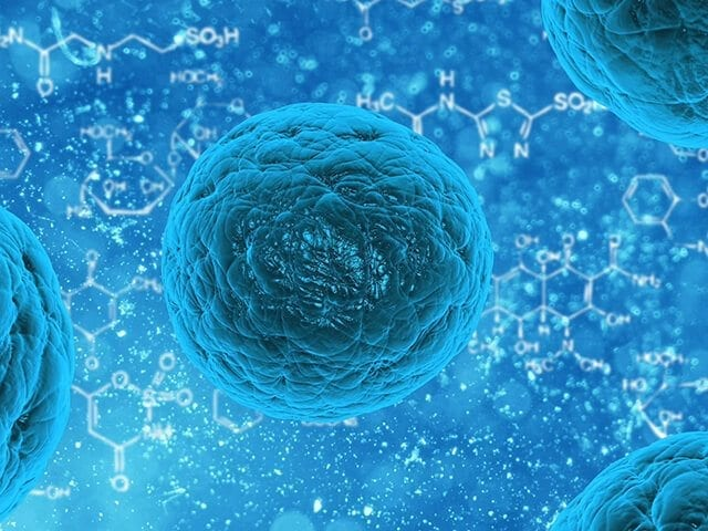 Bayer and Versant Ventures invest $225-million US to commercialize stem cell technology through BlueRock Therapeutics