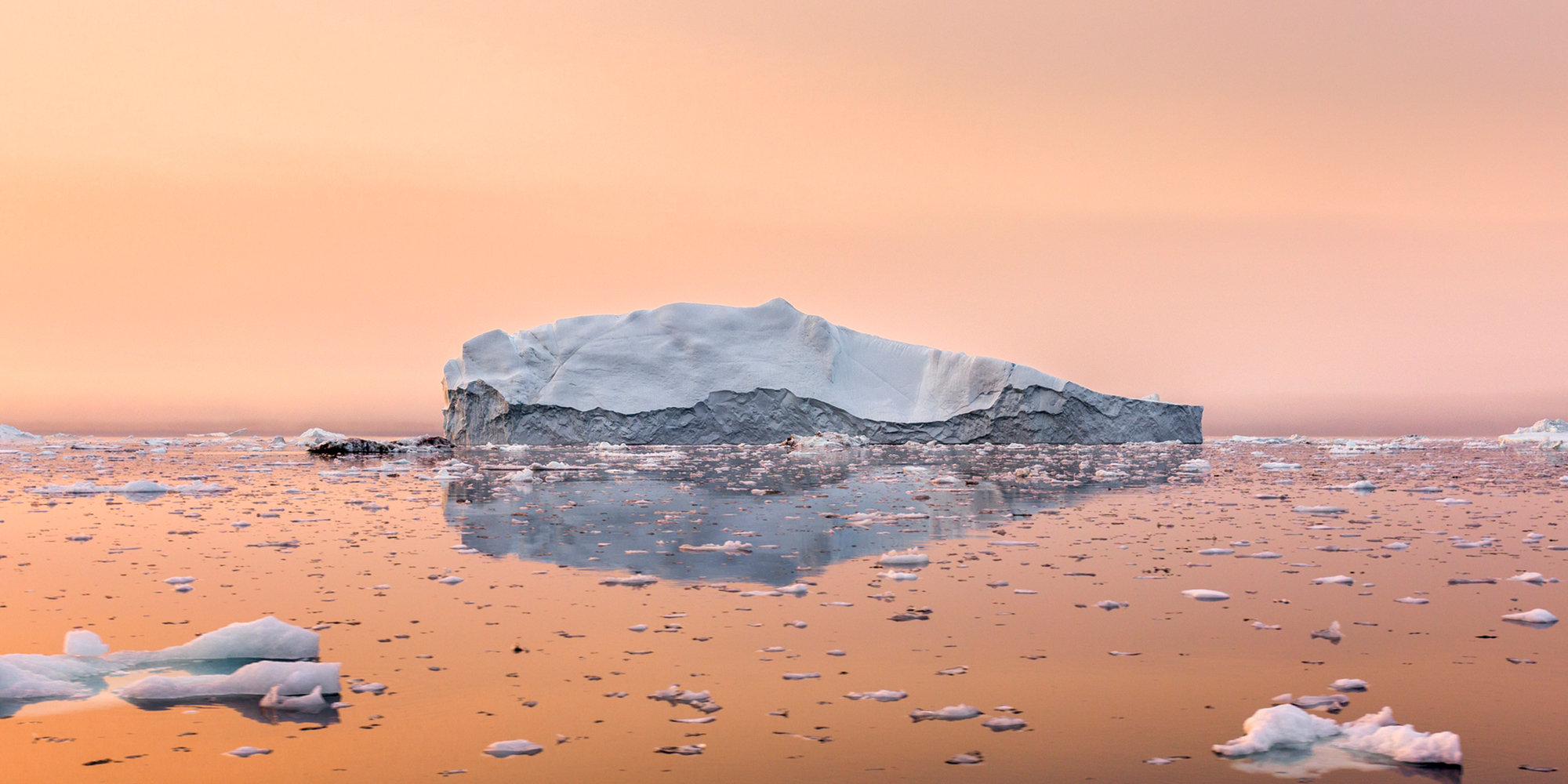 6 reasons to feel optimistic about the climate crisis